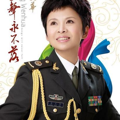 董文华《今天是你的生日,中国-吉他谱》吉他谱